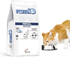 Forza10 Active Kidney Renal Diet Dry Cat Food for Adult Cats, Cat Food Dry for Heart and Kidney Problems, Wild Caught Anchovy Flavor, 4 Pound Bag