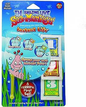 Sea Monkeys Instant Life Amazon Co Uk Toys Games