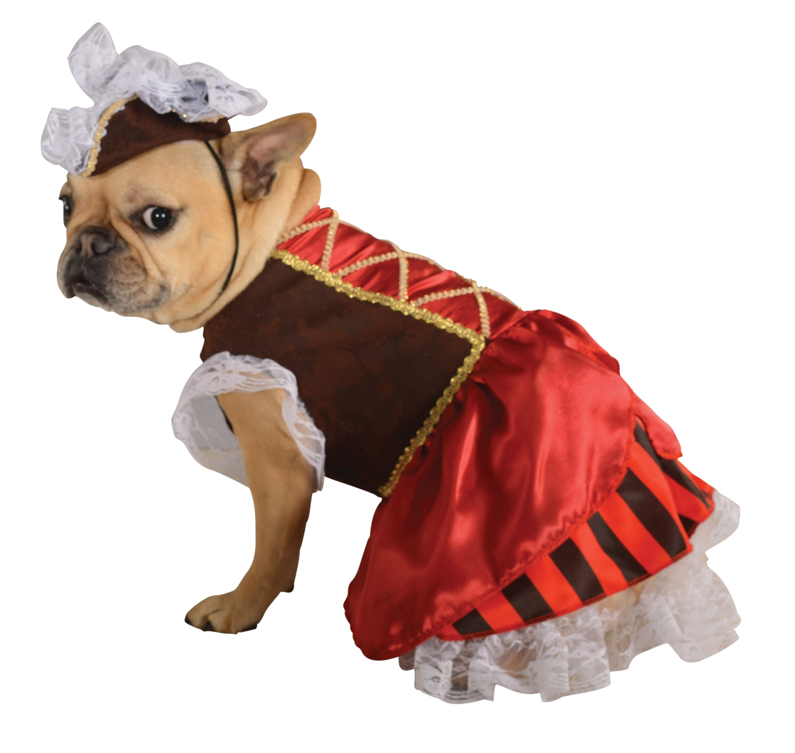 Rubie's Pet Costume, Large, Pirate Girl by Rubie's (Image #1)