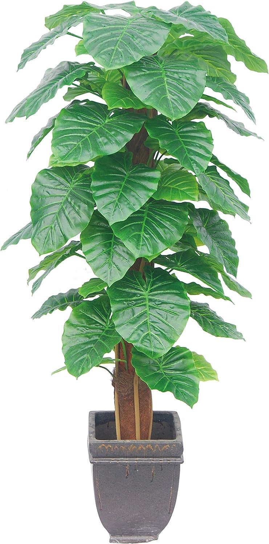 Plante Artificielle Taro-145cm