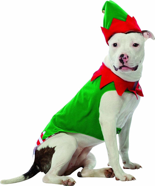 Disfraz de elfo para perro: Amazon.es: Hogar