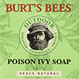 Burt's Bees Baby Bee Poison Ivy Soap - Fragrance Free - 2 oz