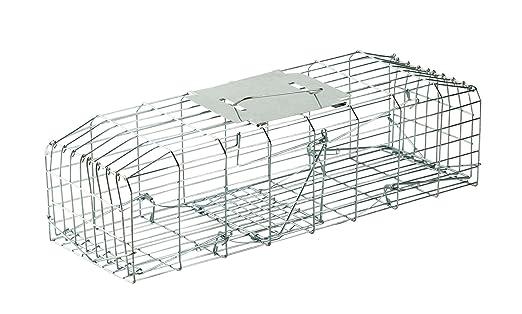 PestPatrol Conejo jaula trampa: Amazon.es: Jardín
