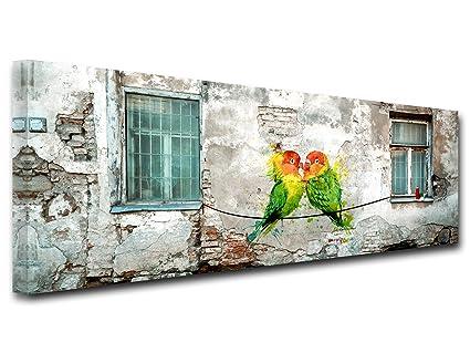 Declina Tableau Decoratif Toile Murale Tableau Salon Deco Tableau Toile Panoramique Perruches Multicouleur 150x60 Cm