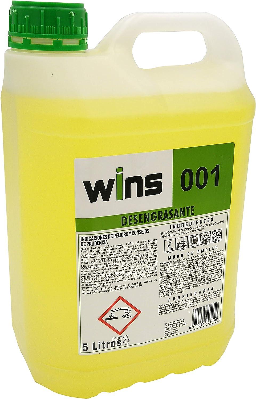 Vinfer Wins 001 Desengrasante Concentrado Profesional 001 para Multitud de Superficies. Botella 5 Lt: Amazon.es: Hogar