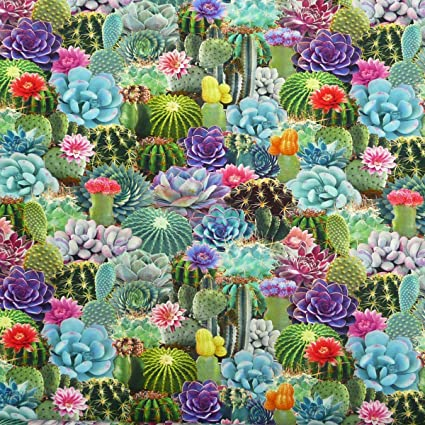 127e53bedd6 Jersey Fabric Digital Print Cactus: Amazon.co.uk: Kitchen & Home