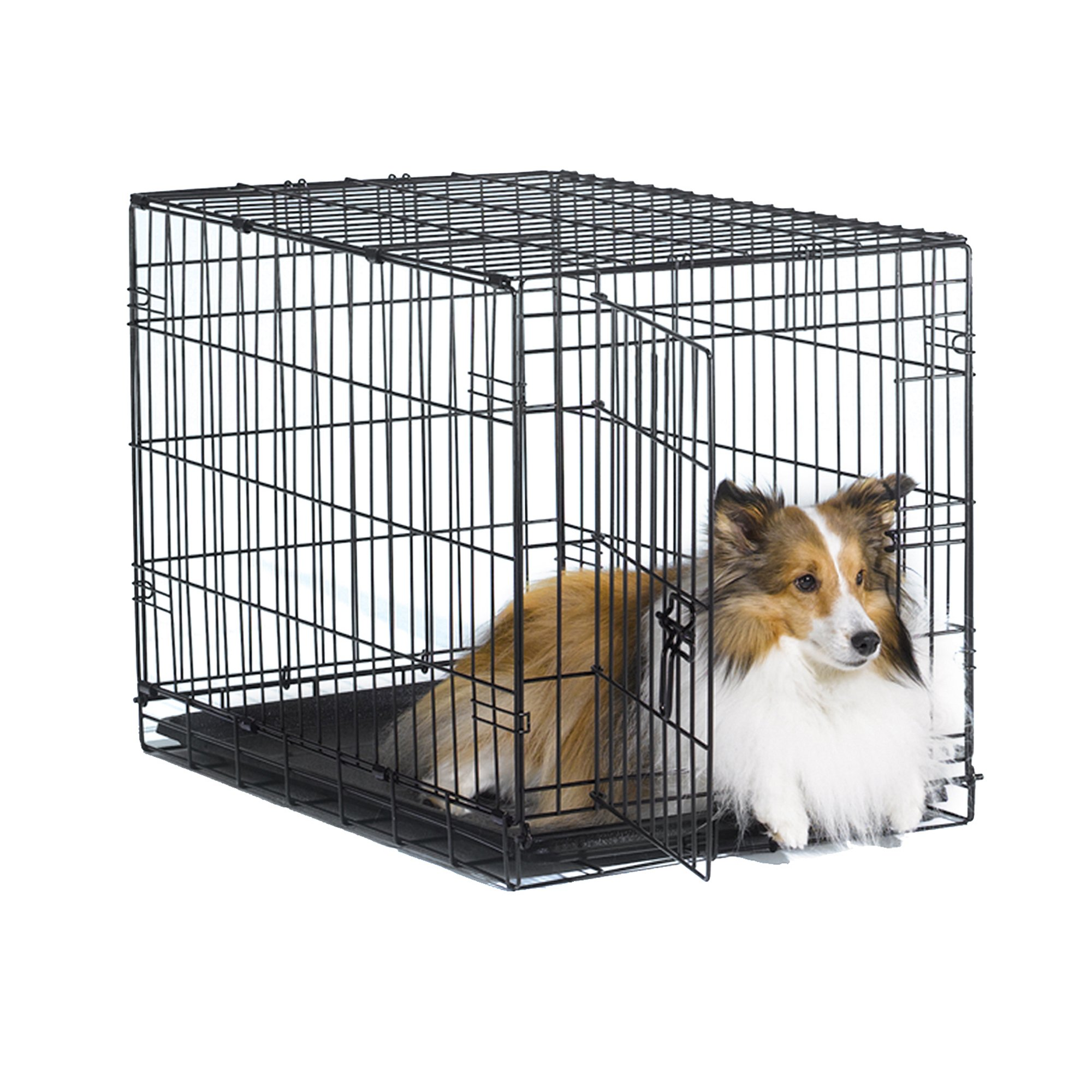 New World 30'' Folding Metal Dog Crate, Includes Leak-Proof Plastic Tray; Dog Crate Measures 30L x 19W x 21H Inches, For Medium Dog Breeds by New World Crates (Image #1)