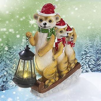 Solar Weihnachtsbeleuchtung Figuren.Led Weihnachtsbeleuchtung Solar Erdmännchen 2017 Mit Laterne Warmweiß Handbemalt Mit Tageslichtsensor Ideal Für Den Garten Terasse