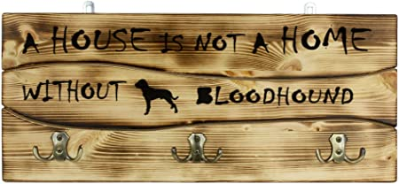A House Is Not A ... Bloodhound Wood Dog Sign Wall Plaque Photo Display 5 x 10