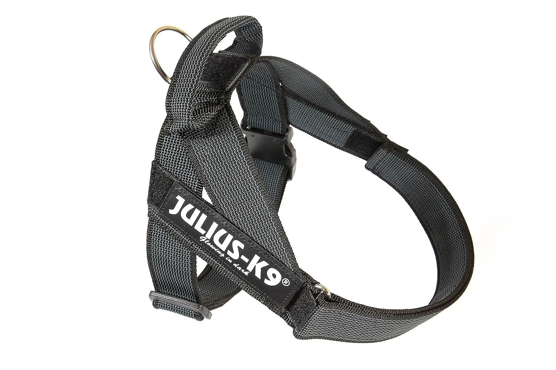 Arnés para cinturón de seguridad JULIUS-K9 y Correa para Perro ...