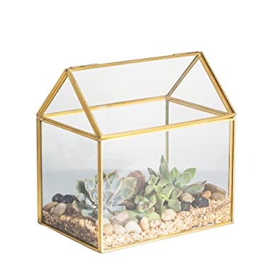 NCYP 4.33 inches Brass Copper House Shape Close Glass Geometric Terrariumn Tabletop Succulent Plant Garden Geo Planter Moss Fern Swing Lid Reptile 6.1 x 6.3 x 4.33 inches