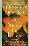 A Year to Live: How to Live This Year as If It Were