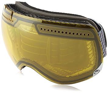 05febc02963 Dragon Alliance Advanced Project X Ski Goggles