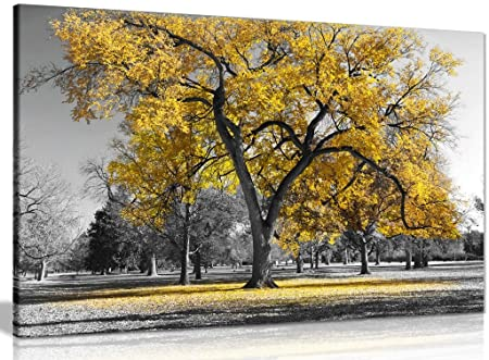 Large tree yellow leaves black white nature canvas wall art picture print 36x24in