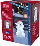 Konstsmide 6182-203 / Cane LED in acrile con cappello da Natale / 40 diodi bianco freddo / 24V trasformatore da esterno / cavo trasparente