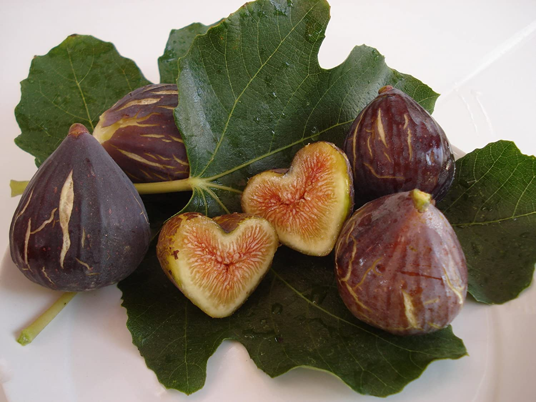 Set de 3 pequeños moldes en forma de corazón para el cultivo de hortalizas y frutas, Veggie Mold: Amazon.es: Hogar
