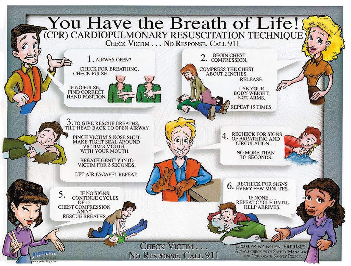 Brady 18'' X 24'' Full Color On White Paper Prinzing CPR Training Poster''PRINZING CPR TRAINING POSTER TUBED''