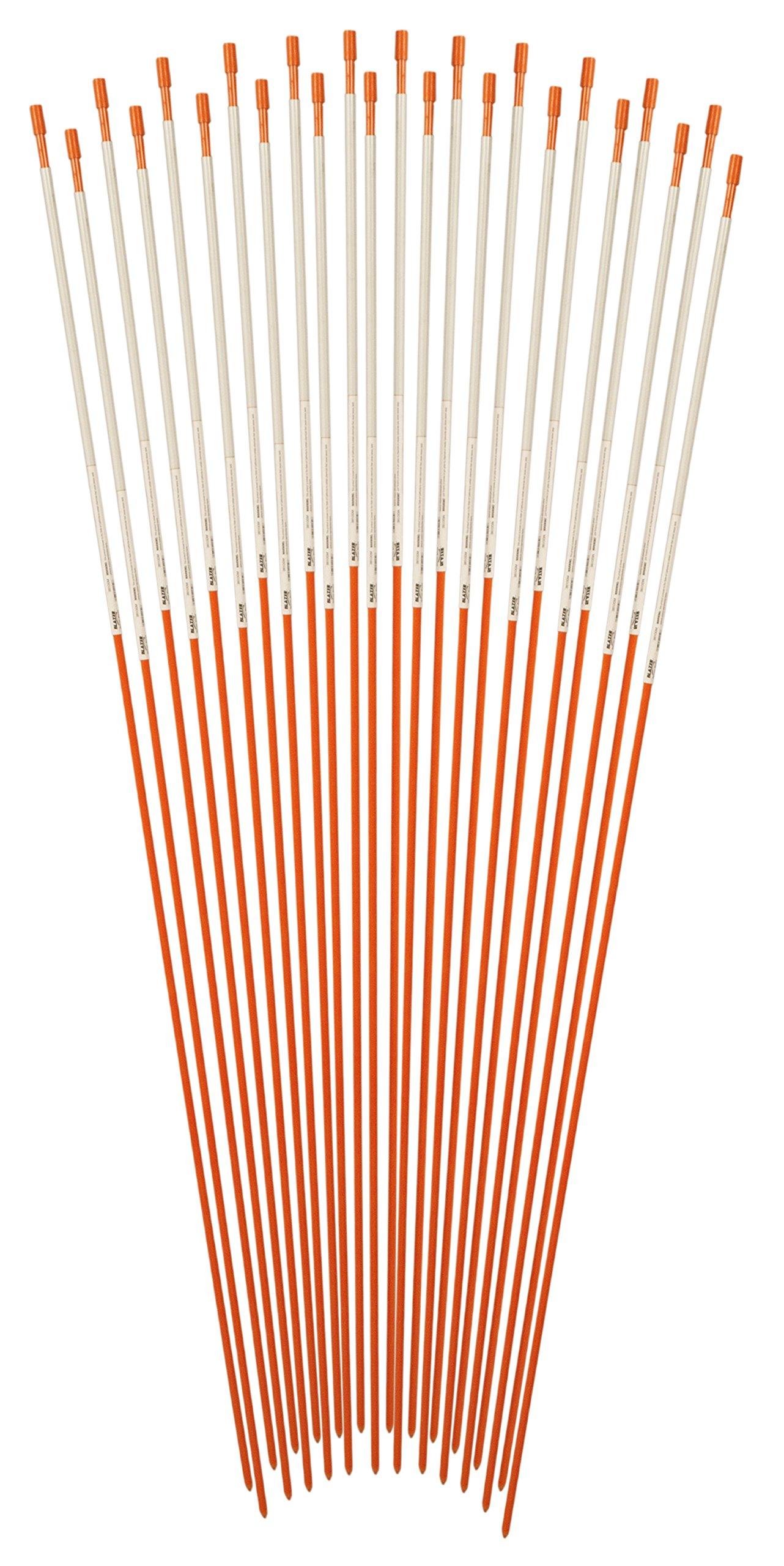 Blazer 372ODM-24 Orange 72'' Reflective Driveway Marker, 24 Pack (Fiberglass Pole) by Blazer International Trailer & Towing Accessories