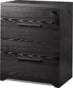 DEVAISE 2-Drawer Wood Lateral File Cabinet with Lock for Office Home, Black