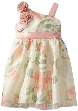 45e6c9861e7 Amazon.com  Jayne Copeland Little Girls  Floral Print Mesh  Special  Occasion Dresses  Clothing