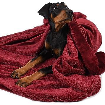 Amazon.com: Manta grande para perro, súper suave y cálida de ...