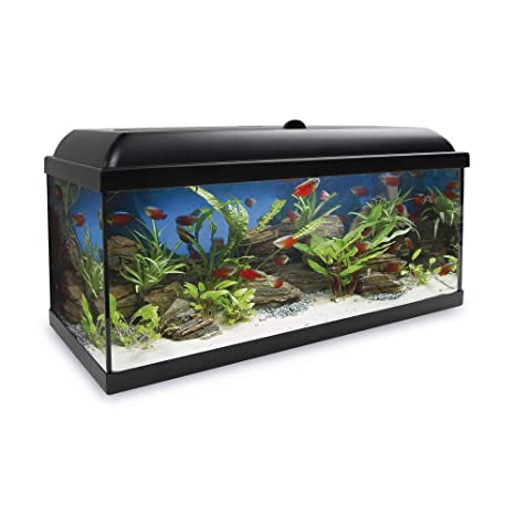 ICA KHA150N Kit Hydra 150 para Agua Dulce