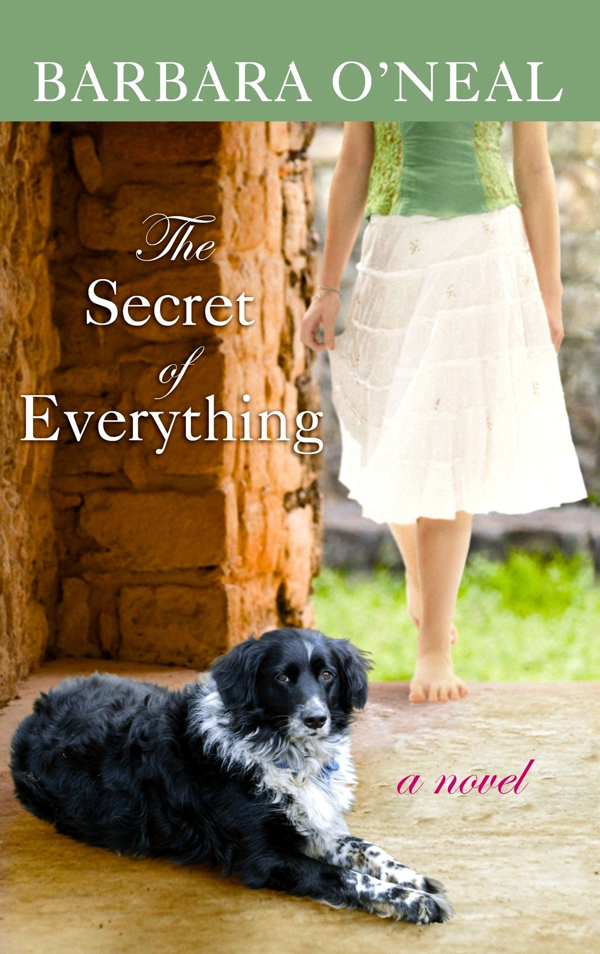 Download The Secret of Everything (Center Point Premier Romance (Large Print)) pdf
