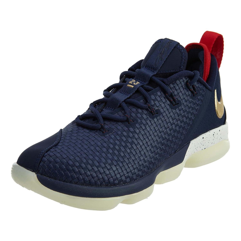 NIKE Lebron XIV Low Men Basketball Shoes – 10