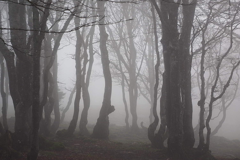 En El Interior De La Puerta Delantera, Kwboo Snow Mountain Pine Needles Forest Burning Cloud Backdrop Alfombras De Ba/ño Alfombras Antideslizantes Felpudo En El Piso Puertas De Entrada