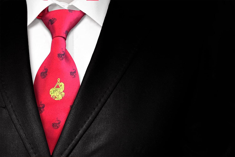 Masónico administradores poliéster tejido corbata: Amazon.es: Jardín