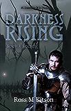 Darkness Rising (Book 3: Secrets) (Prism)