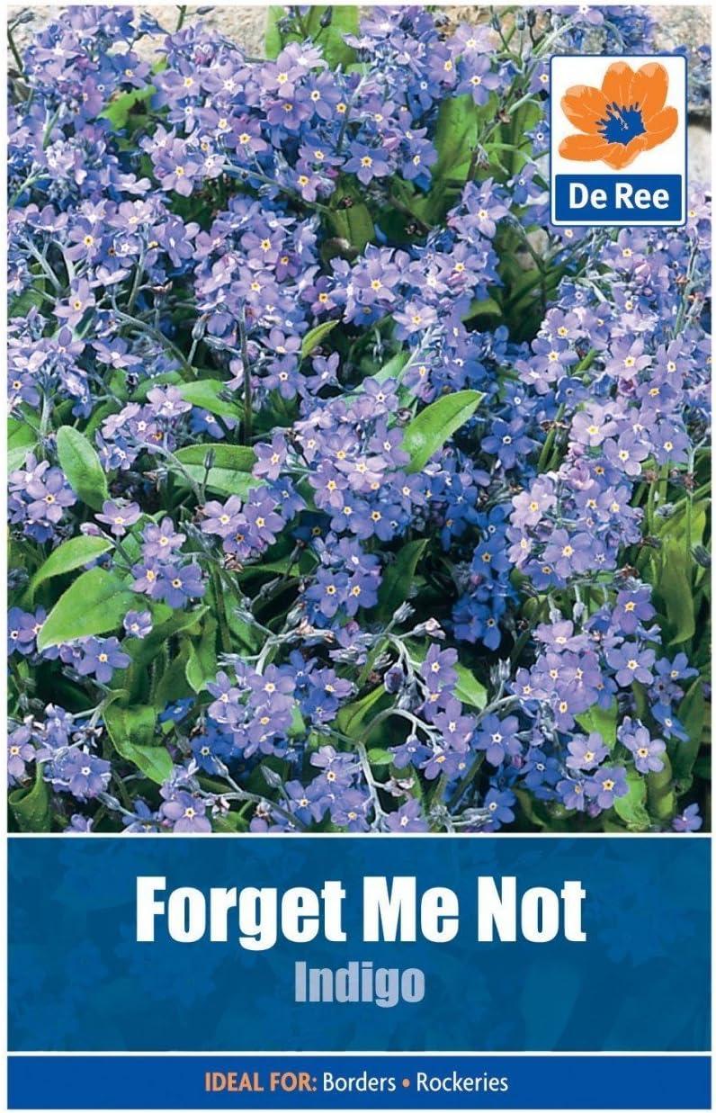 Forget-Me-Not seeds Myosatis arvensis Wild Flower 2g 3200 Fresh Meadow BN