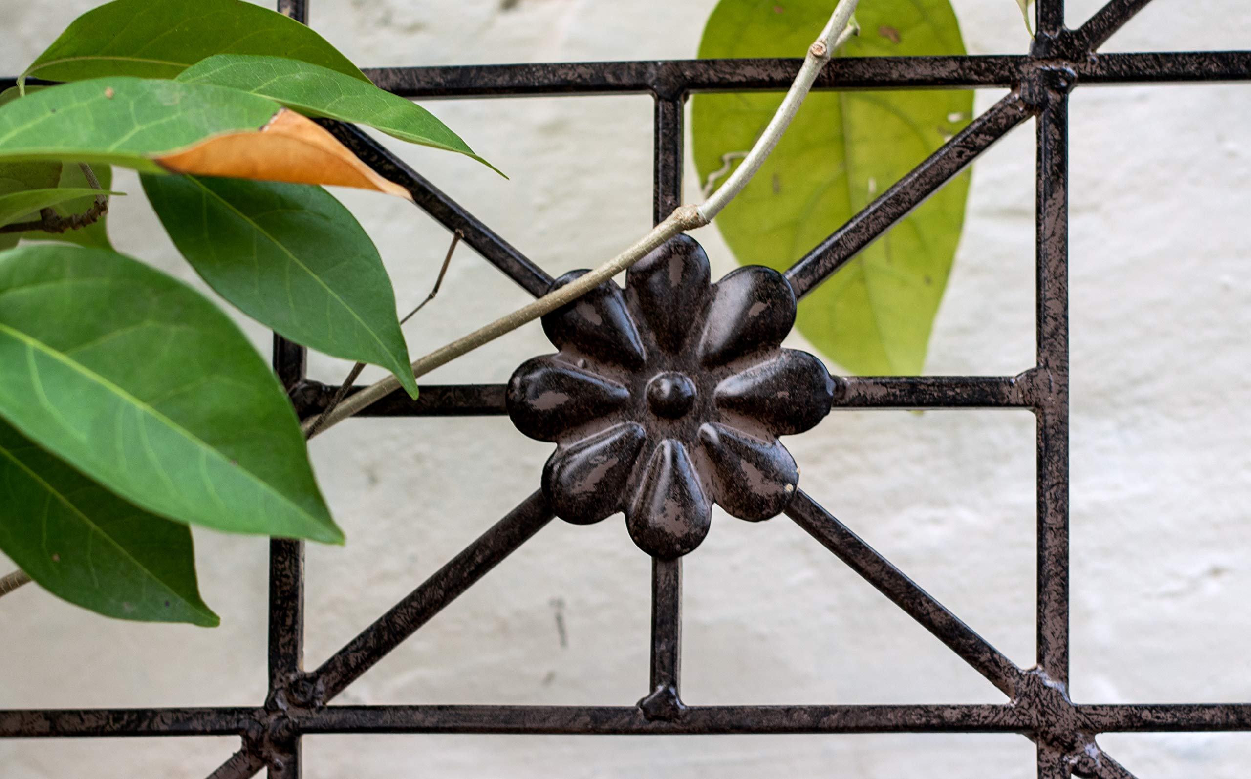 H Potter 5.5 Foot Tall Garden Flower Trellis Wrought Iron Heavy Scroll Metal Decoration Lawn, Patio & Wall Decor Screen for Rose, Clematis, Ivy Patio Deck Wall Art by H Potter (Image #5)