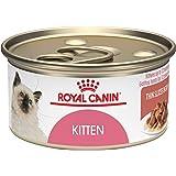 Royal Canin Feline Health Nutrition Kitten Thin Slice In Gravy canned cat food