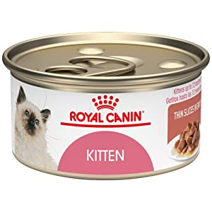 Royal Canin Nutrition Kitten