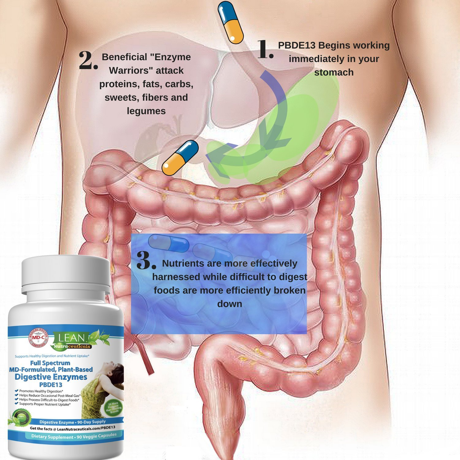 Md Certified Digestive Enzyme Supplements Plant Based Pancreatic Enzymes For Digestion