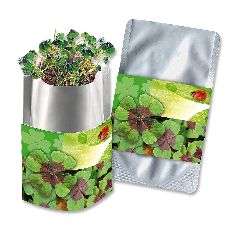 Pflanztüte Plant Bag Glücksklee Bull + Bear