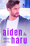 Aiden to Haru: A Stepbrothers BL Harem (The Brothers Book 2)