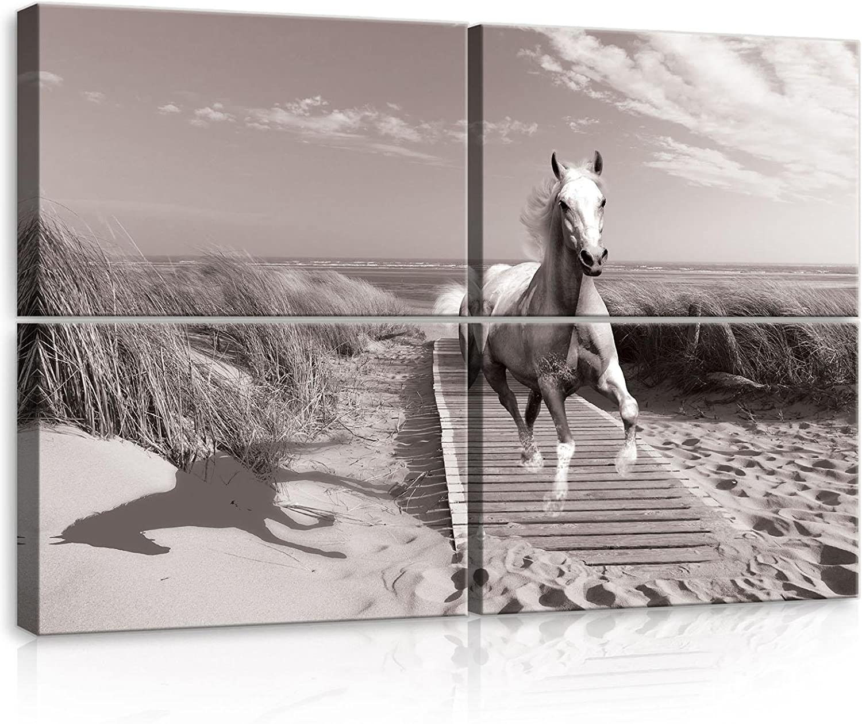 Cuadro artístico de lienzo con diseño de caballo en el galope en la playa AMF10229_PS10 Canvas Picture Print natural paisaje playa mar mar océano marítimo, lona, beige, S10 (120cm. x 80cm. (4x60x40))
