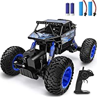 YEZI RC Car 1:18 Large Scale, 2.4Ghz All Terrain Waterproof Remote Control Truck with Two Battery,4x4 Electric Rapidly…