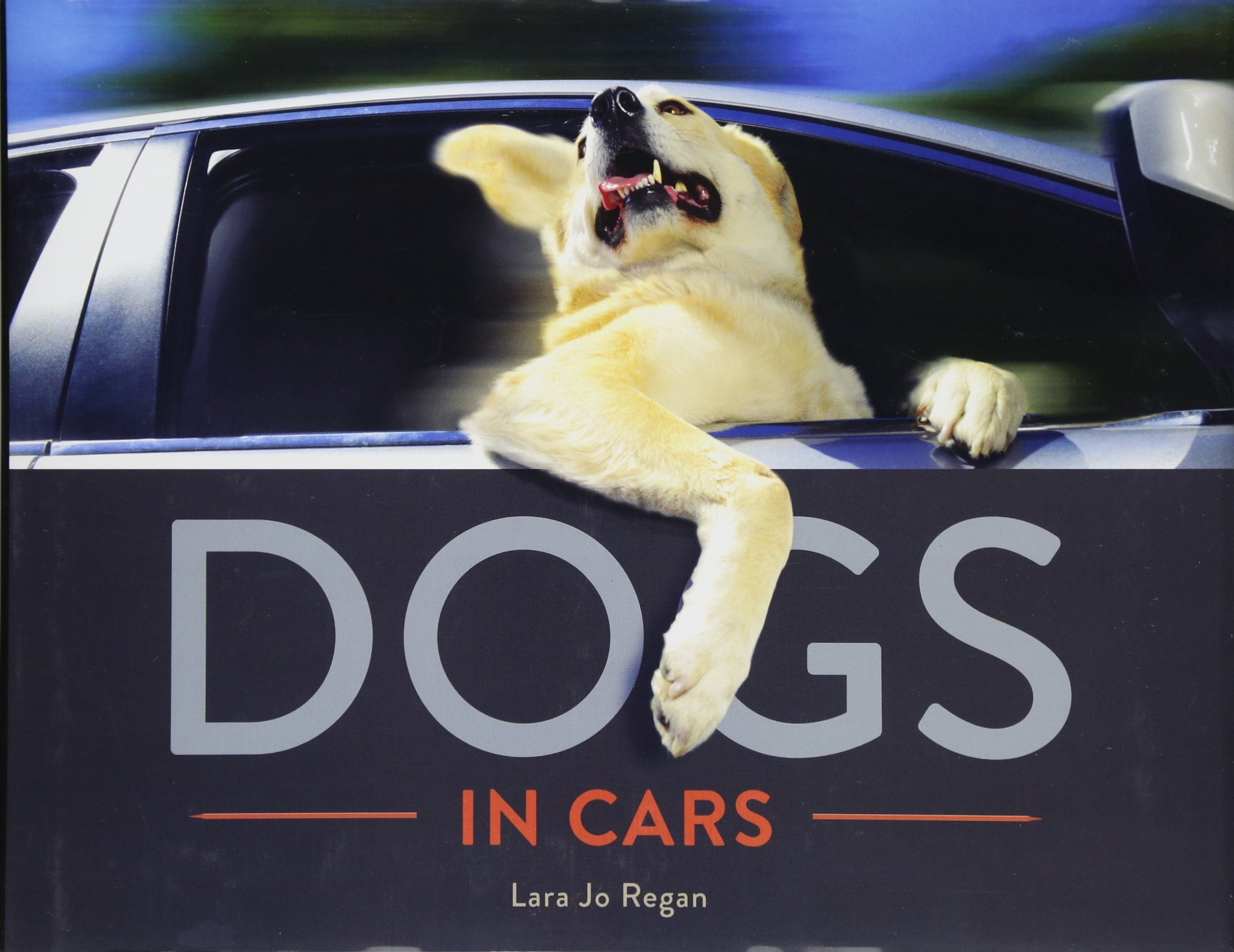Dogs in Cars PDF