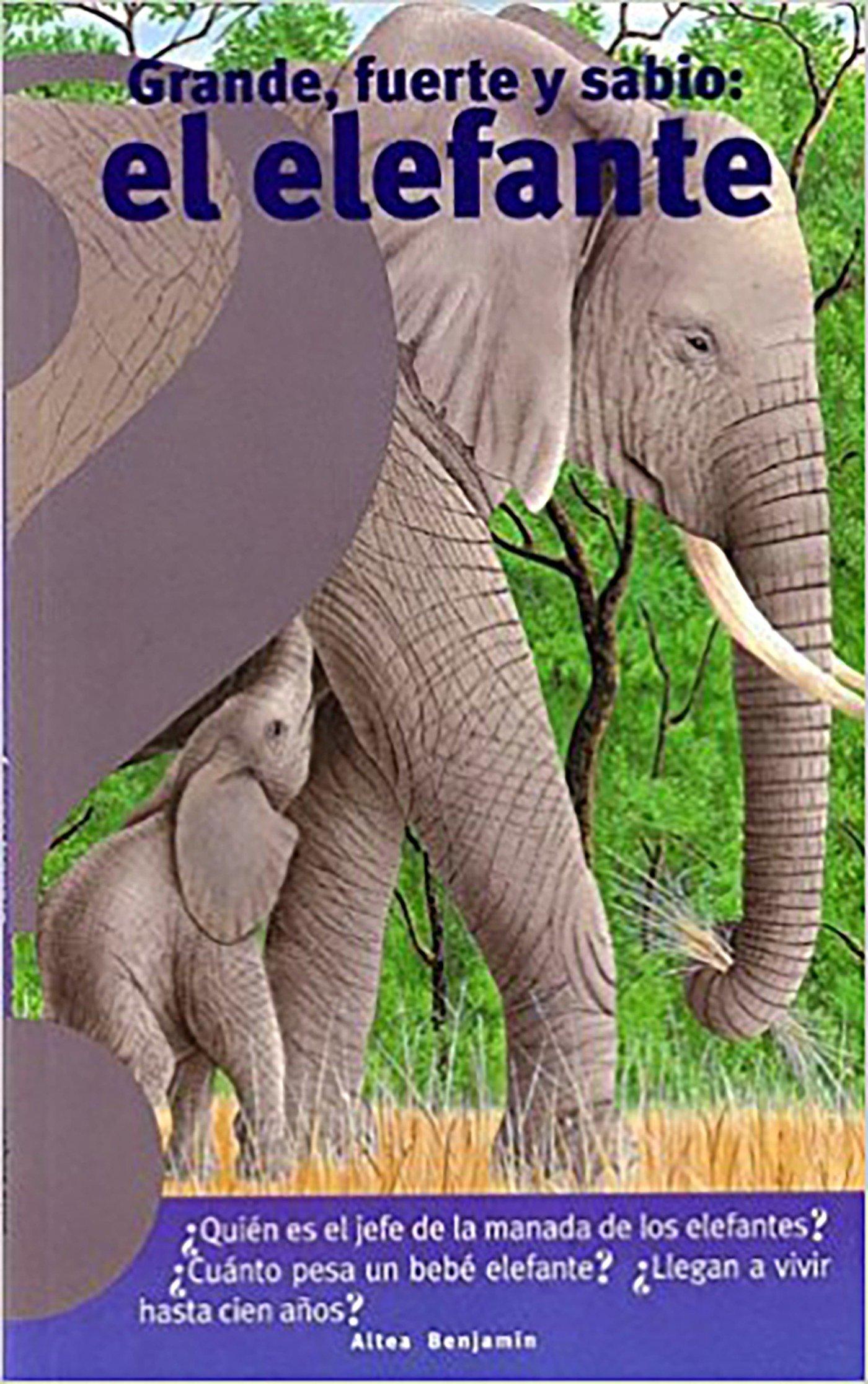 Grande, fuerte y sabio: el elefante / Big, Strong and Smart Elephant (Spanish Edition) by Altea