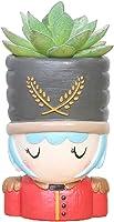 Youfui Home Decor Pot, Animal Succulent Planter Flowerpot Home Office Desk Decoration (Soldier)