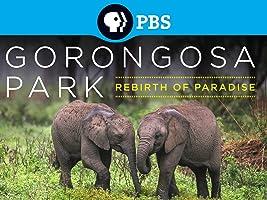 Gorongosa Park Rebirth of Paradise Season 1