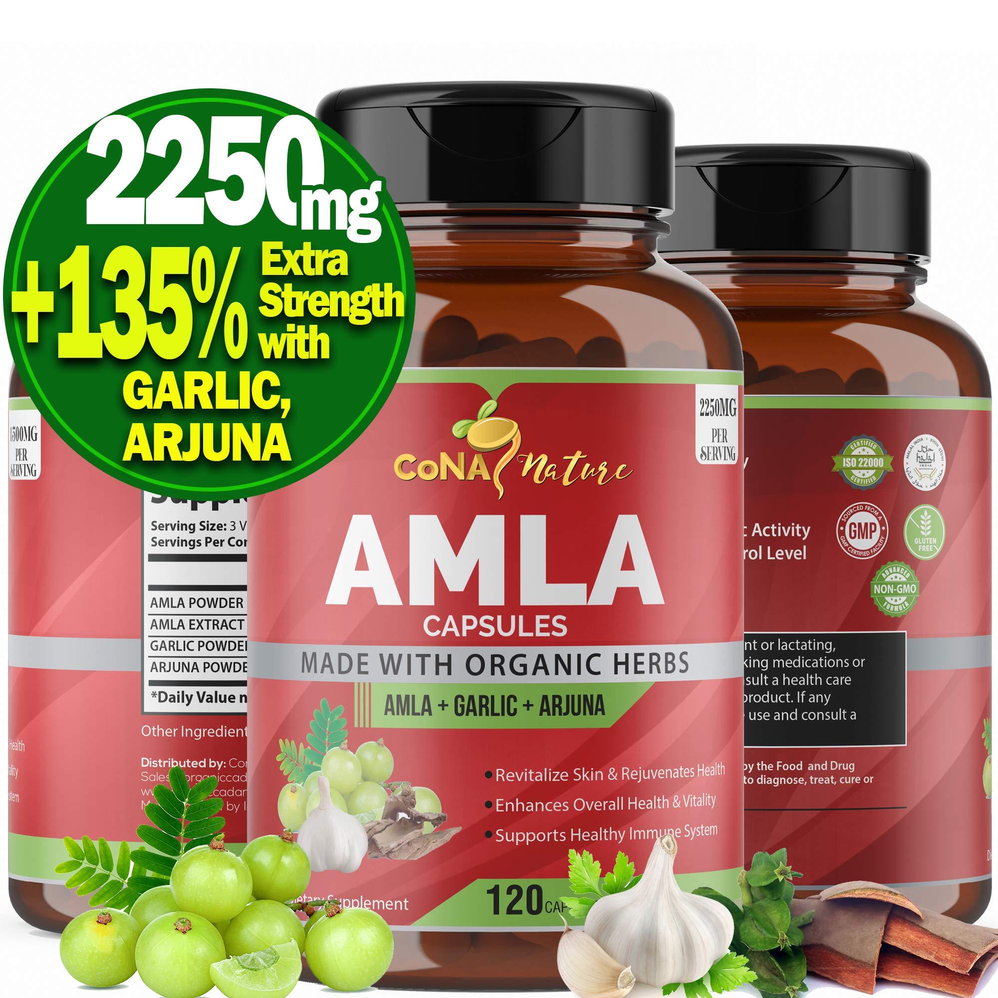 Organic Amla Capsules 2250mg & Arjuna, Garlic |Natural Vitamin C Supplements, High Antioxidants, Rejuvenator |Supports Immunity, Energy Booster |Gluten Free Vegan India Amalaki Extract Fruit, 120 Caps