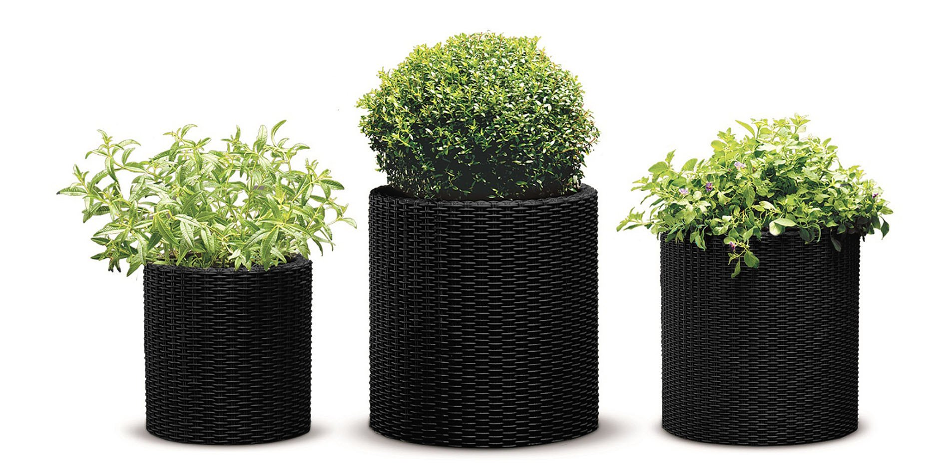 Keter 238672 3 Piece Cylinder Rattan Plastic Planter, Charcoal Grey by Keter