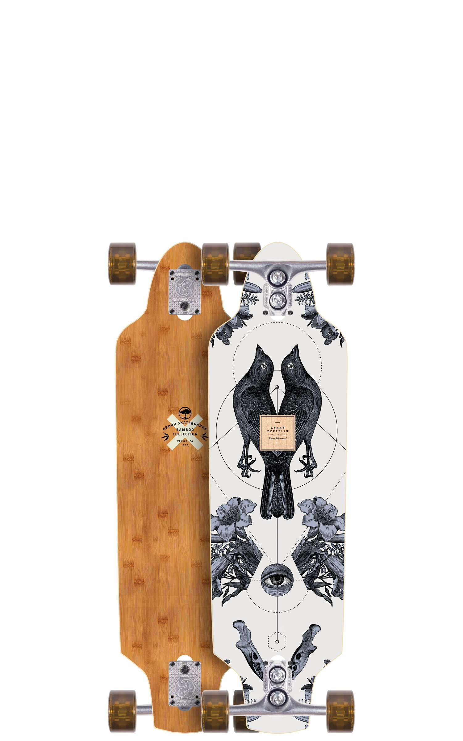 Arbor Zeppelin Bamboo Series Complete Skateboard, 32'' by Arbor