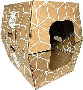 Cats Desire Biodegradable & Disposable Litter Box