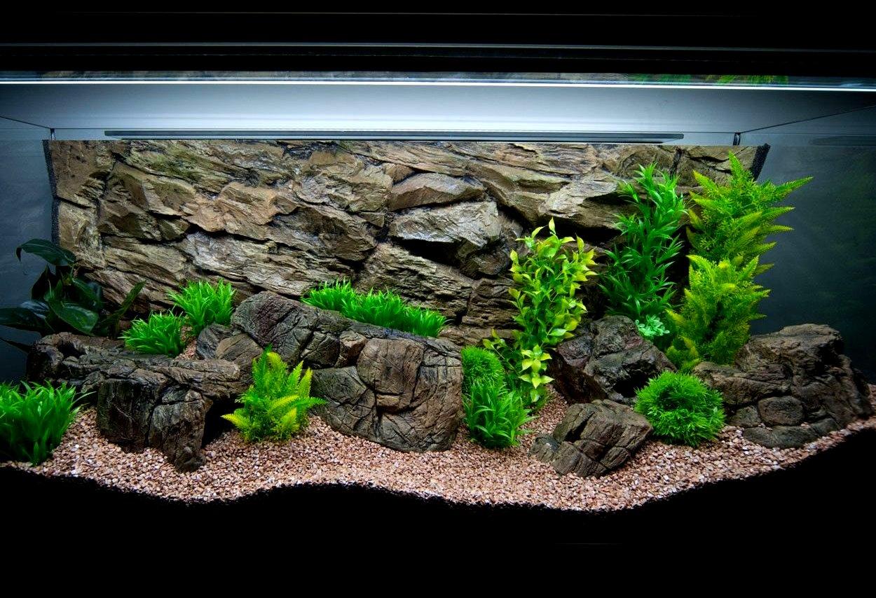 Aqua Maniac - Mini roca de color beige para acuario, para peceras pequeñas vacías en el interior, para la cría y la hípica: Amazon.es: Productos para ...