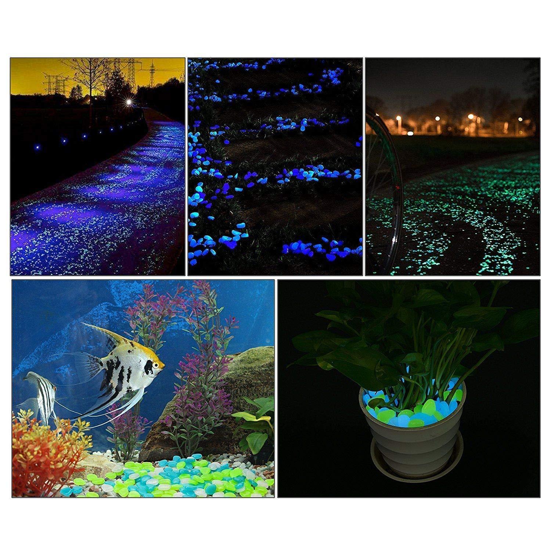 leuchtet im Dunkeln Gehweg Dekoration Aquarium Garten Hof Kieselsteine 200 St/ück leuchtende Kopfsteinpflastersteine f/ür Zuhause